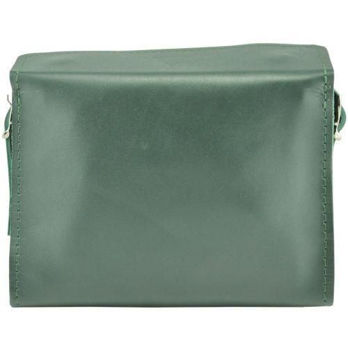 Женская кожаная сумочка Agruz Easy in city зеленая