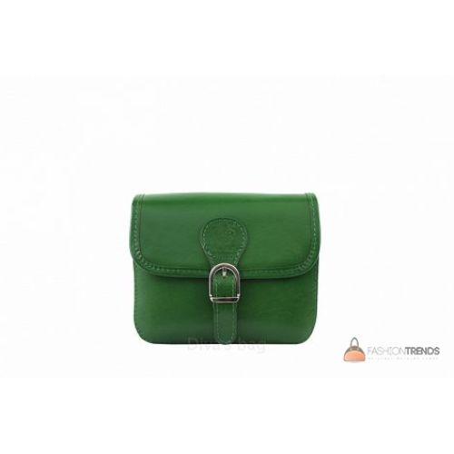 Итальянская кожаная сумка DIVAS Alma TR956 зеленая