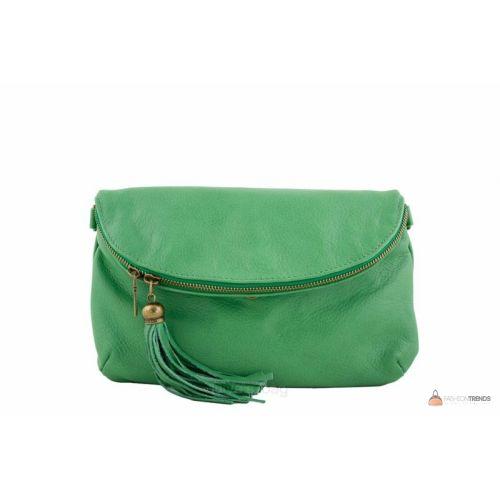 Итальянская кожаная сумка DIVAS SABINE TR928 зеленая