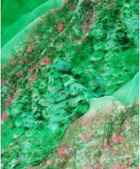 Шарф TRAUM 2495-71 зеленый с цветами